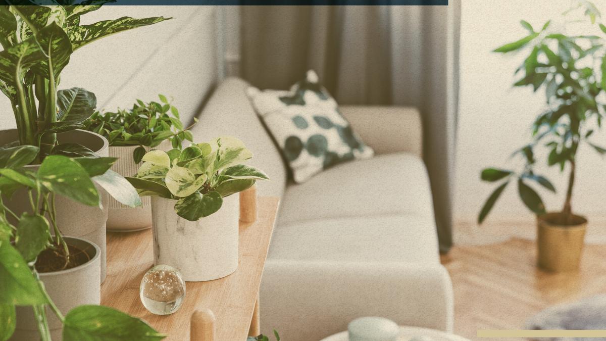 plantas apartamento